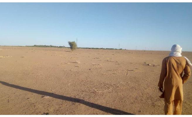 ARLIT : Un projet agro-silvo-pastoral, une alternative à la migration clandestine et au chômage en perspective des agents des sociétés minières