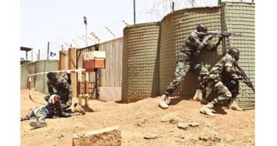 SECURITE : Une simulation d'attaques terroristes à Niamey en prélude au Sommet de l'UA 2019