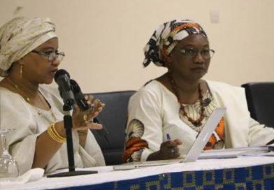 RAPPORT : Un progrès de l'image publique des OSC du Niger en 2018